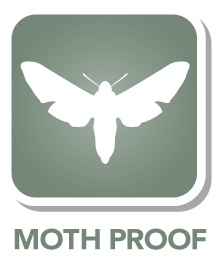 Moth resistant to protect your carpet