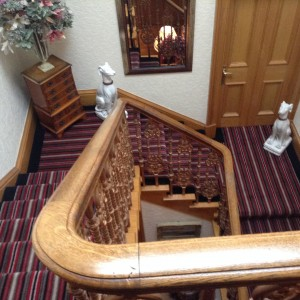 Castlemead Velvet Stripe looking great on these stairs!